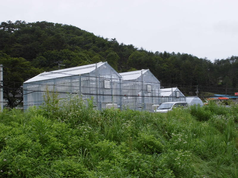 植物工場全景